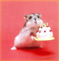 Birthdaymouse