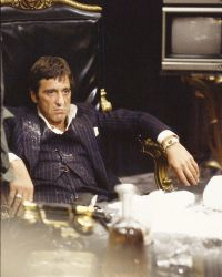 Scarface-photo-xl-scarface-6235696
