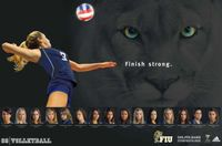 Fiuvolley