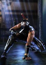 Ninja-gayden