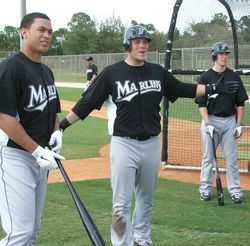 Marlins Outfield