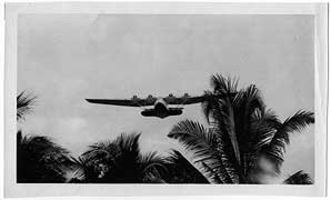 Pan Am seaplane flying over palms
