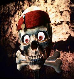Pirates skull2-1
