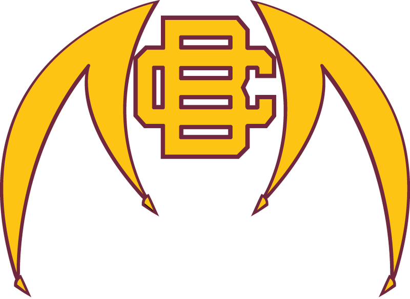 2906_bethune-cookman_wildcats-alternate-2010