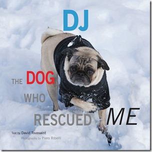 DJ cover