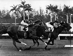 Hialeah Race Track