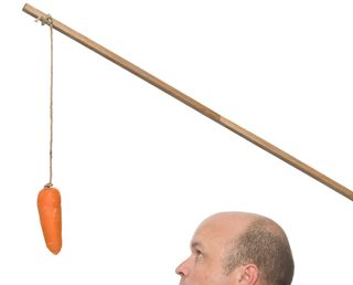 Carrot-stick-mans-head