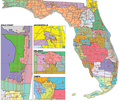 Coalition proposed remedial map