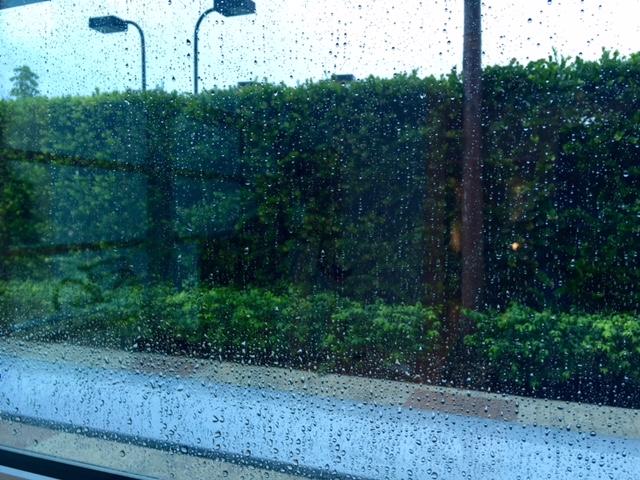 Rainschwartzcenter101816