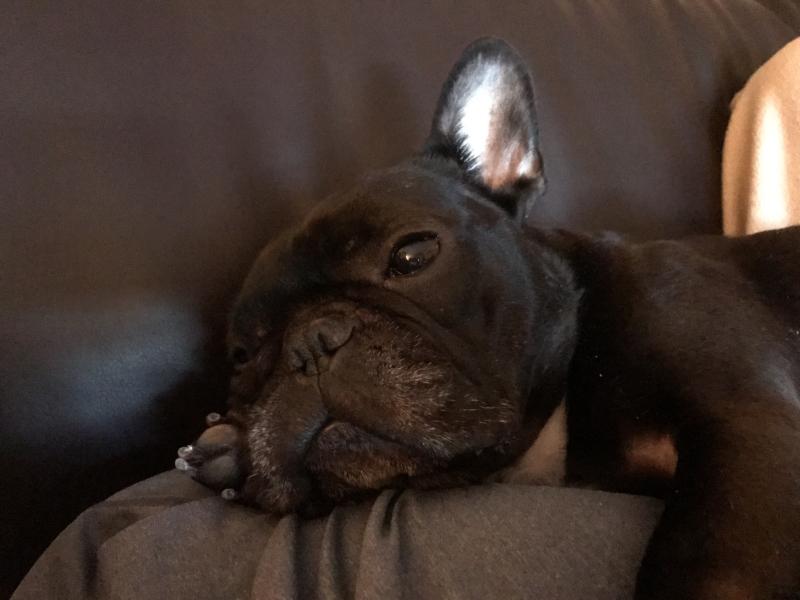 Nola Couch