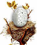 Tech egg