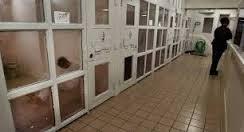 Prisons Miami Herald
