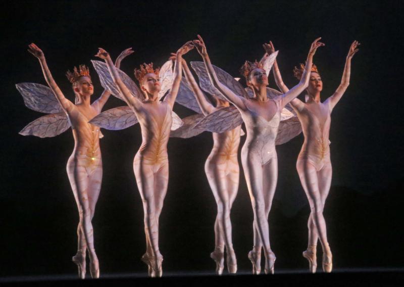 IMG_All00_Ballet_Gal_Hmg_2_1_2L7IMR33_L205769760