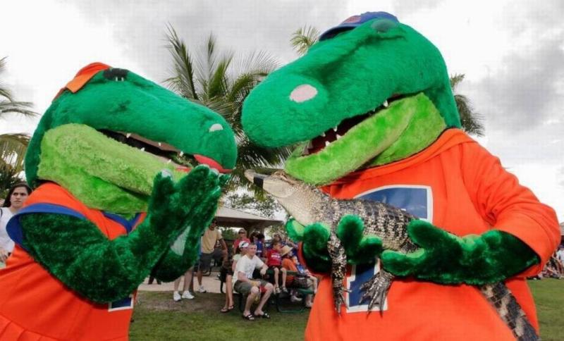 Gator2Gator08 gator dade jv