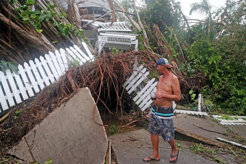 Key West Tree Down 2