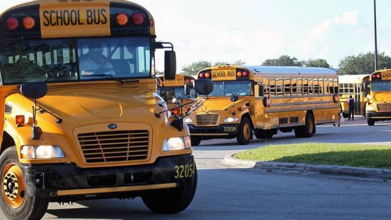 Bus1 fleet lnew cmg (1)