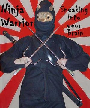 Ninja_warrio