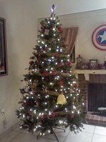 Ourtree