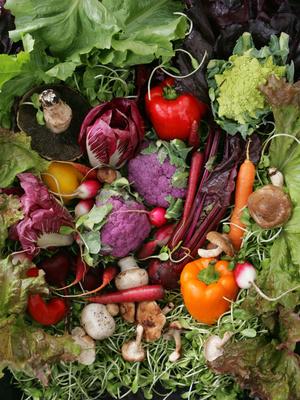 Cvr25_farmmkt_food_jml