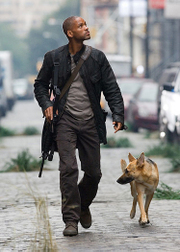 I_am_legend_will_smith__1__2
